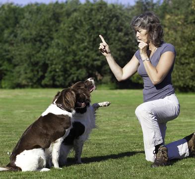 dog-thumb